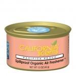 California scents - pacifica peach